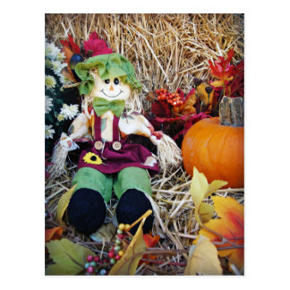 Little Miss Scarecrow Postcard