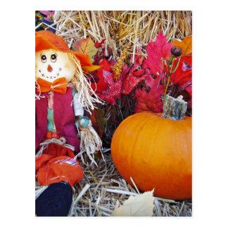 Little Mister Scarecrow Postcard
