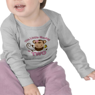 Little Monkey 2nd Birthday Girl Infant T-shirt