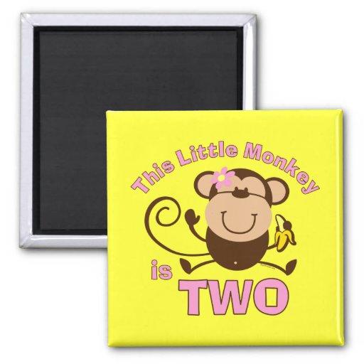 Little Monkey 2nd Birthday Girl Magnet