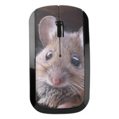 Little Mouse Design Wireless Mouse at Zazzle