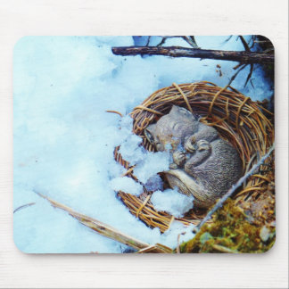 Little mouse sleeping in the snow mouse pad