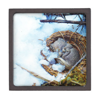 Little mouse sleeping in the snow premium gift boxes