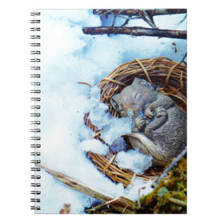 Little mouse sleeping in the snow spiral notebooks