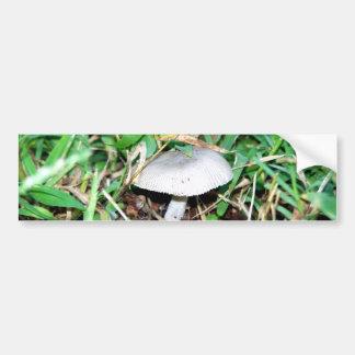 Little Mushroom Bumper Sticker