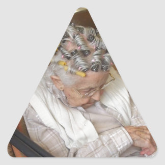 LIttle Old Lady Sleeping Under Hair Dryer Stickers