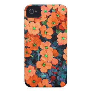Little Orange Flowers iPhone 4 Cover