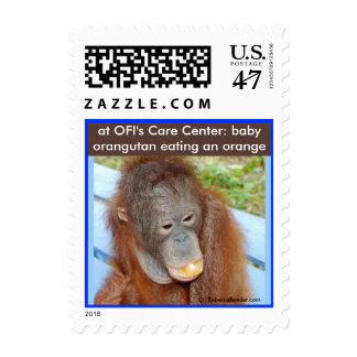 Little Orangutan Orphan Eating an Orange Postage