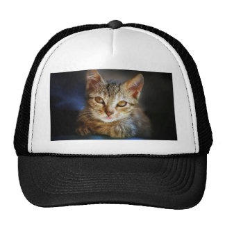Little Orphan just for you Trucker Hat