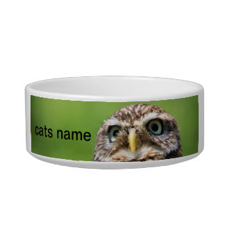 Little owl bird cat custom name pet bowl