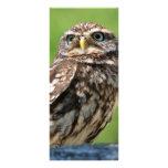Little owl bird photo custom name bookmark personalized rack card