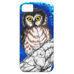 Little Owl iPhone 5 Cases