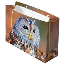Little Owl Large Gift Bag