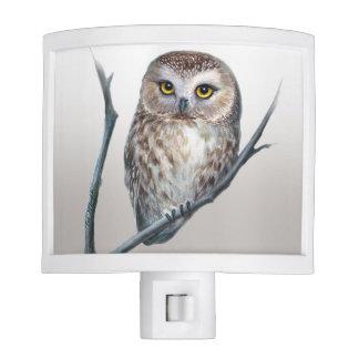 little owl night light