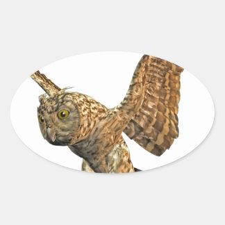 Little Owl Oval Sticker