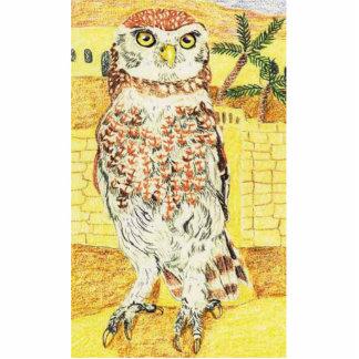 Little Owl Standing Photo Sculpture