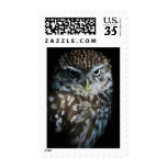 Little Owl Stamp