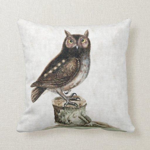 Throw Pillows With Owls : Little Owl Throw Pillow