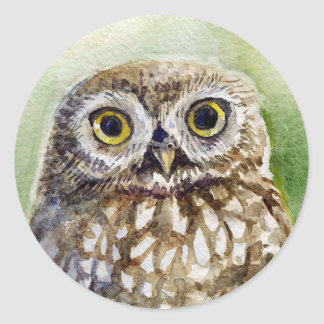 Little owl watercolor painting large head round sticker
