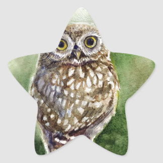 Little owl watercolor painting star sticker