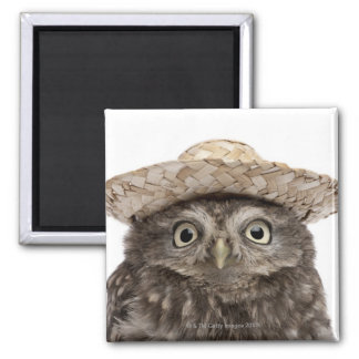 Little Owl wearing a straw hat - Athene noctua 2 Inch Square Magnet