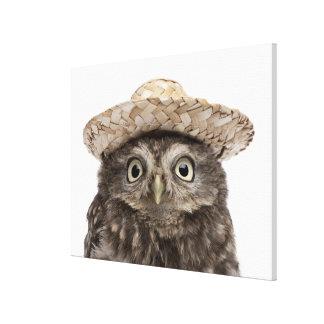 Little Owl wearing a straw hat - Athene noctua Canvas Print