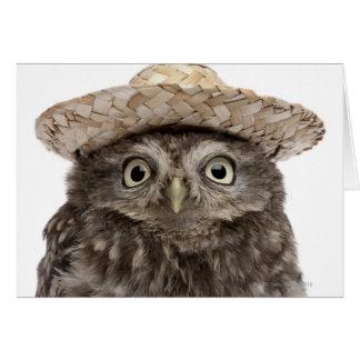 Little Owl wearing a straw hat - Athene noctua Card