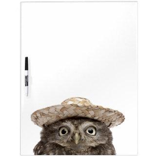 Little Owl wearing a straw hat - Athene noctua Dry-Erase Board