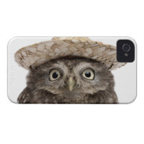 Little Owl wearing a straw hat - Athene noctua iPhone 4 Case