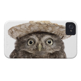 Little Owl wearing a straw hat - Athene noctua iPhone 4 Cover