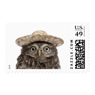 Little Owl wearing a straw hat - Athene noctua Stamp
