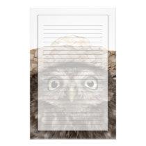 Little Owl wearing a straw hat - Athene noctua Stationery
