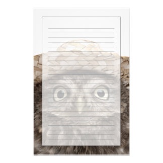 Little Owl wearing a straw hat - Athene noctua Stationery