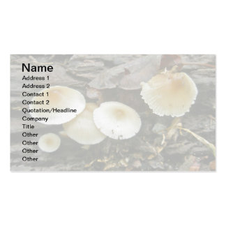 Little Parasols Mushrooms on Log Double-Sided Standard Business Cards (Pack Of 100)