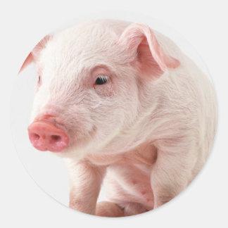 Little Pig Round Stickers