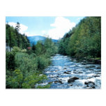 Little Pigeon River Postcard (historical)
