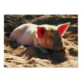 Little Piggy Card