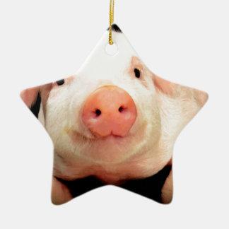Little Piggy Ceramic Ornament