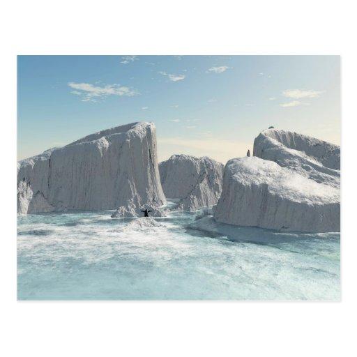 Little Pinguin on a ice rock Postcard