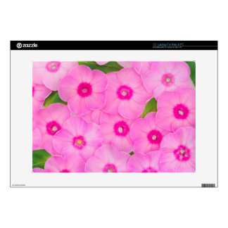 little pink flowers decals for laptops