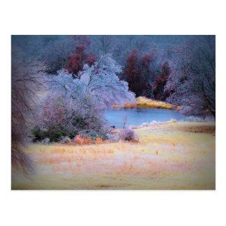 Little Pond Ice 1 Postcard