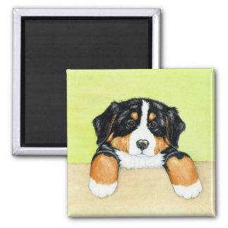 Little pup magnet