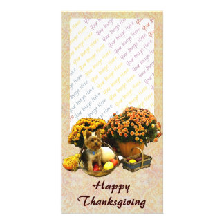 Little Pup's Thanksgiving photo card