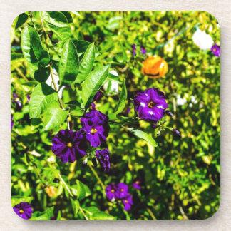 Little Purple Flowers Beverage Coaster