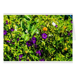 Little Purple Flowers Card