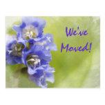 LIttle Purple Flowers Change of Address Postcard