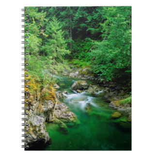 Little Qualicum River Notebook