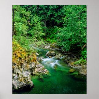 Little Qualicum River Poster