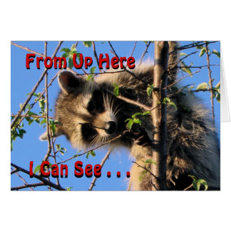 Little Racoon Any Occassion card-customize Card