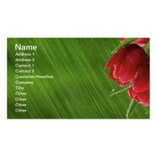 Little_Rain_jpeg Double-Sided Standard Business Cards (Pack Of 100)